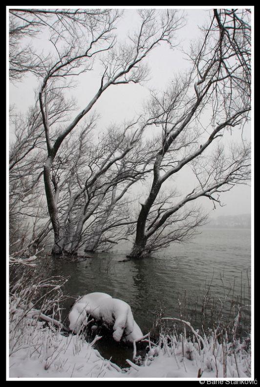 sneg-2.jpg