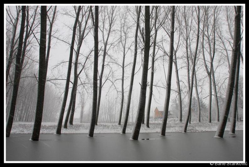 sneg-3.jpg